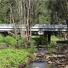 Bridge In The Bush by aussiebushstick