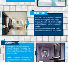 An Infographics on 2013's latest bathroom trends by Infographics