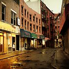 Rainy Evening - New York City - Chinatown by Vivienne Gucwa