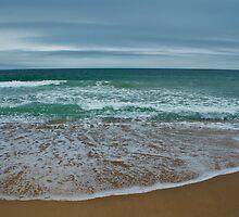 Rhode Island Sea Scape  by barkeypf