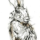 Big Brown Hare by Abby  Diamond