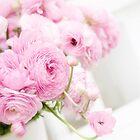 A Bride's Delight! - iPad Case by Patricia L. Walker