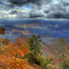 Autumn At The Grand Canyon  by Diana Graves Photography