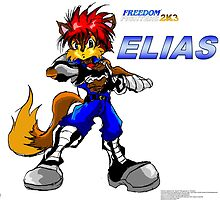 Elias Acorn (Freedom Fighters 2K3) Poster by TakeshiUSA