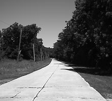 Missouri Route 66, 2012, B&W. by Frank Romeo