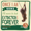 Once I'm Gone (Extinction is forever) by The Orangutan Project