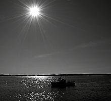 Sunshine day by lumiwa
