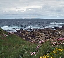 Westray Firth by WatscapePhoto