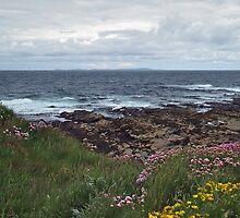 Westray Firth by WatscapePhoto