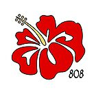 Hawaiian Islands Red Hibiscus 808 by Buckeyefiveo
