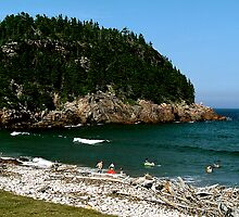 Swim at Black Beach ! by Nancy Richard