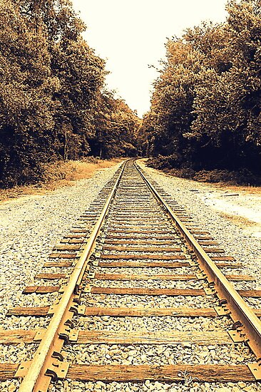 Tracks In Sepia by AuntDot