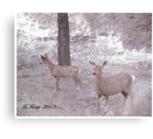 A Doe and Her Fawn Canvas Print