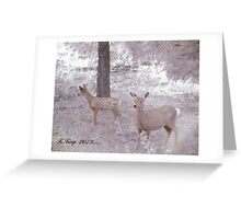 A Doe and Her Fawn Greeting Card