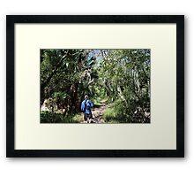 Spring Stroll Framed Print