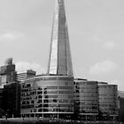 The Shard by Lillie Halton