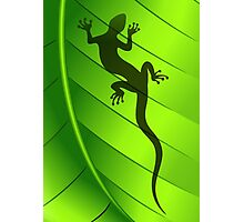 Lizard Gecko Shape on Green Leaf Photographic Print
