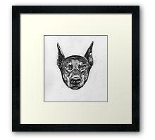 Anubis the Doberman Framed Print