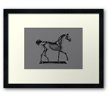 Horse Anatomy Vintage Framed Print