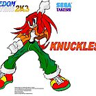 Knuckles (Freedom Fighters 2K3) Poster by TakeshiUSA