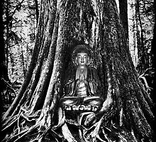 ☀ ツBUDDA IN TREE TRUNK☀ ツ by ✿✿ Bonita ✿✿ ђєℓℓσ