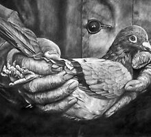 Bird In The Hand by Peter Williams