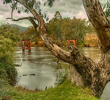 River Bend  Upper Murray - Jingelic NSW - The HDR Experience by Philip Johnson