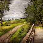 Farm - Landscape - Jersey crops by Mike  Savad
