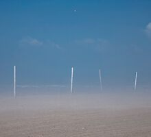 Fog on the Beach by Robin Webster