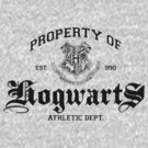 Property of Hogwarts Athletic Dept. by M. Dean Jones