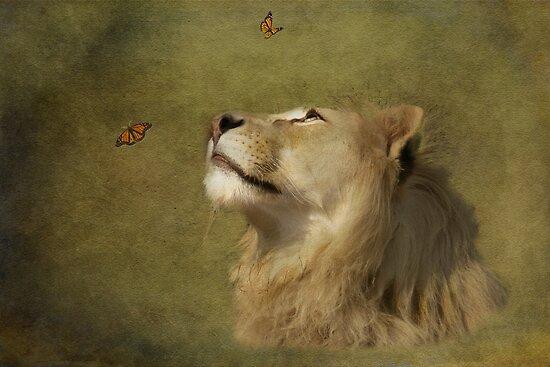 Monarchs by Dave Godden