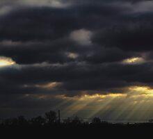 Untitled ( Sunbeam*) by Woodsmen