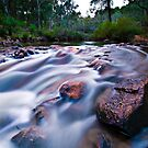 Head Downstream - Dwellingup by Tyson Battersby