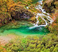 Crystal Clear Mountain Stream by Artur Bogacki