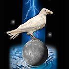 crow 3 by redboy