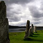 Callanish Stones by Gillian  Ford