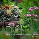 Garden Planter  by KellyHeaton