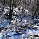 frozen creek by LoreLeft27