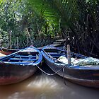Mekong Delta View by Julie Sleeman
