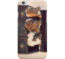 Chest Full Of Treasures iPhone Case/Skin