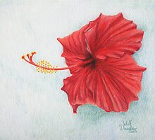 """Red Hibiscus"" © Wolf Daughter by TheWolfDaughter"