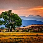 Carson River Tree by homendn
