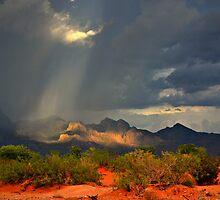 Ray of Hope by Sheryl Gerhard