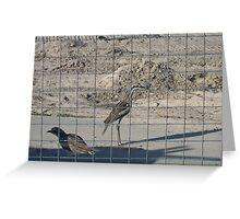 Jail Birds Greeting Card