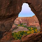 Window at Canyon de Chelly by Dick Paige