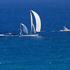 Dorade Wins Transpac 2013 .2 by Alex Preiss
