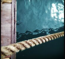Enough Rope by Niki Smallwood