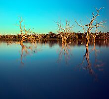 Dawn Races - Lake Pinaroo NSW by Malcolm Katon