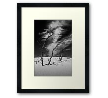 Black and White Photograph of Silver Lake Dune with Dead Trees and Cirrus Clouds Framed Print