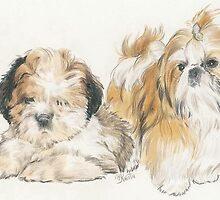 Shih Tzu Puppies by BarbBarcikKeith